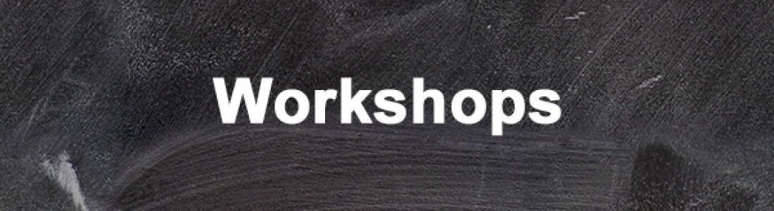 Workshops of Waves of Democracy 2015 is out